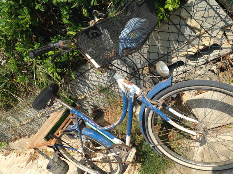 cullera-estany-bici-luciapascual