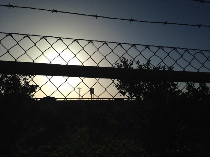 verde-vista-amanecer-gandia-luciapascual