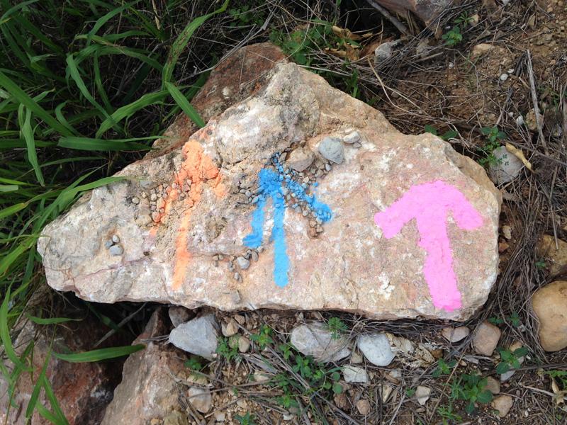 montduver-trail-flechas-luciapascual