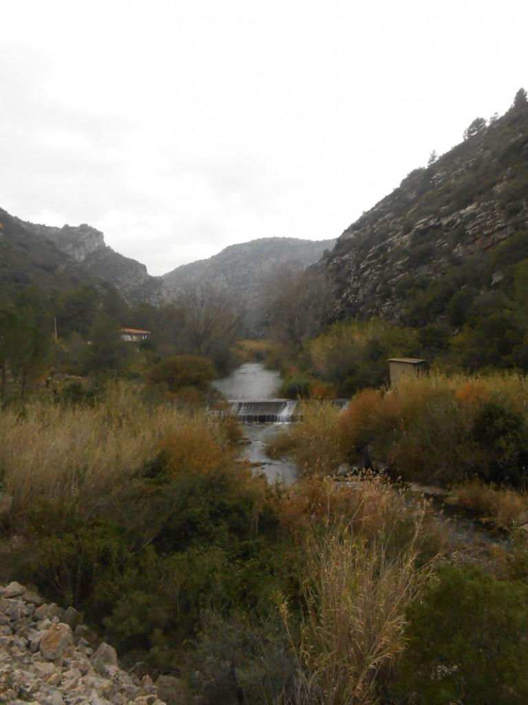 assu2t-trail-villalonga-luciapascual