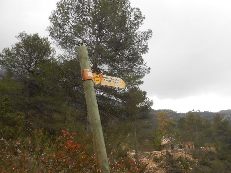 barranc-de-la-parra-trail-villalonga-luciapascual
