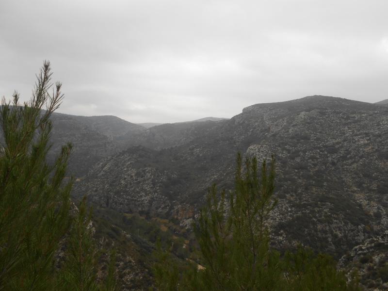 la-safor-trail-villalonga-luciapascual